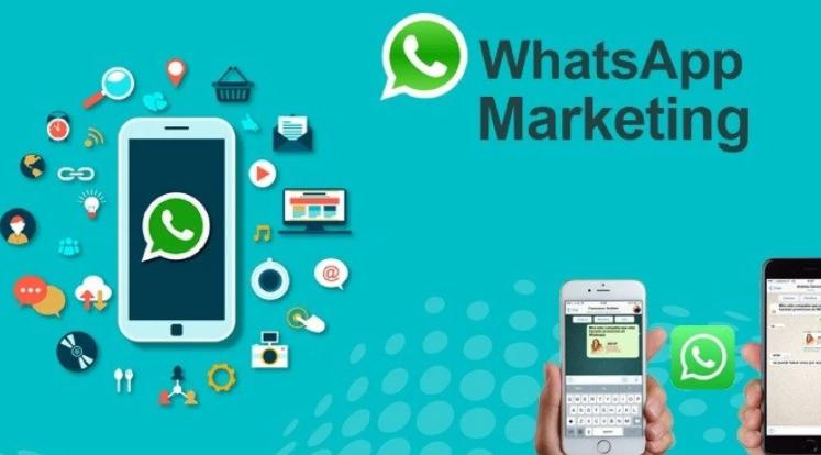 Strategi Whatsapp Marketing
